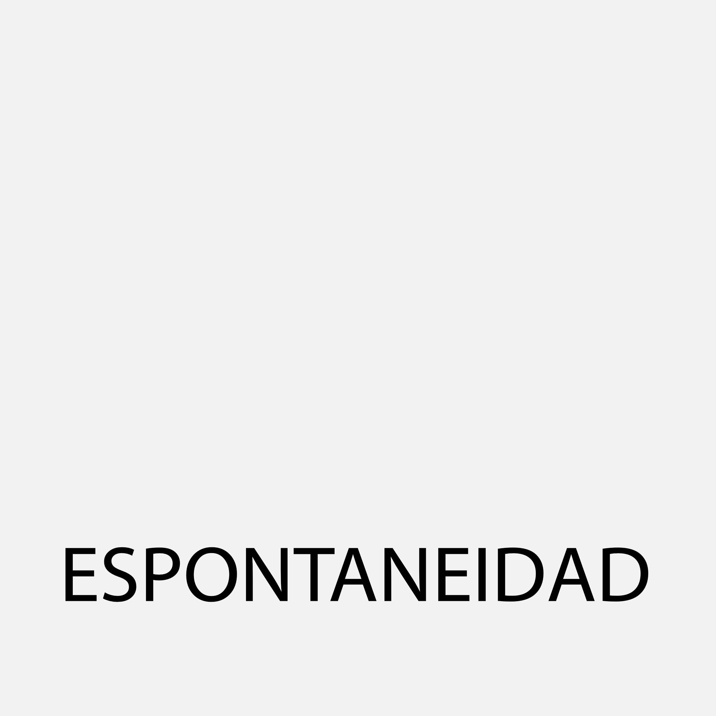 Espontaneidad95Gris.jpg