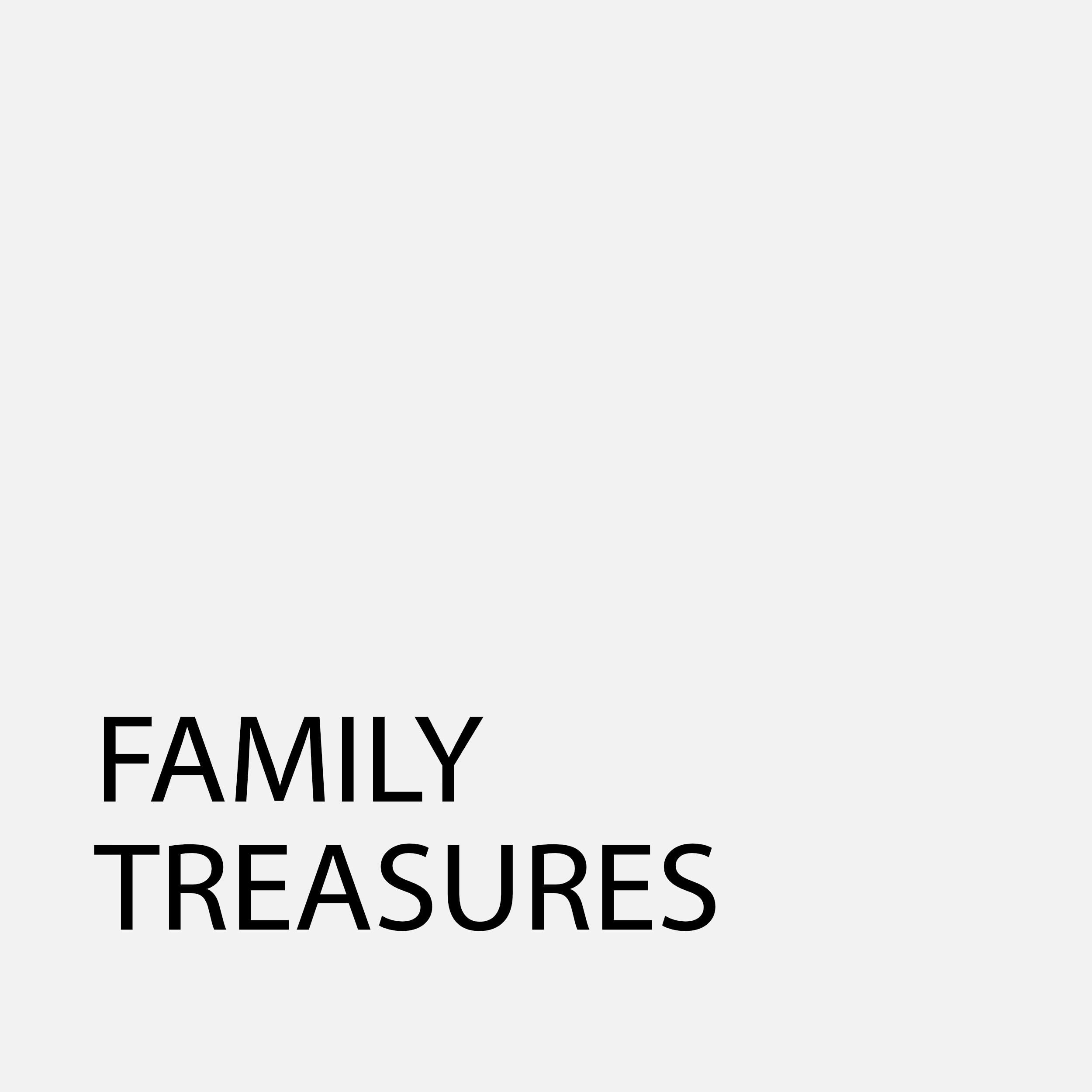 FamilyTreasure95Grey.jpg