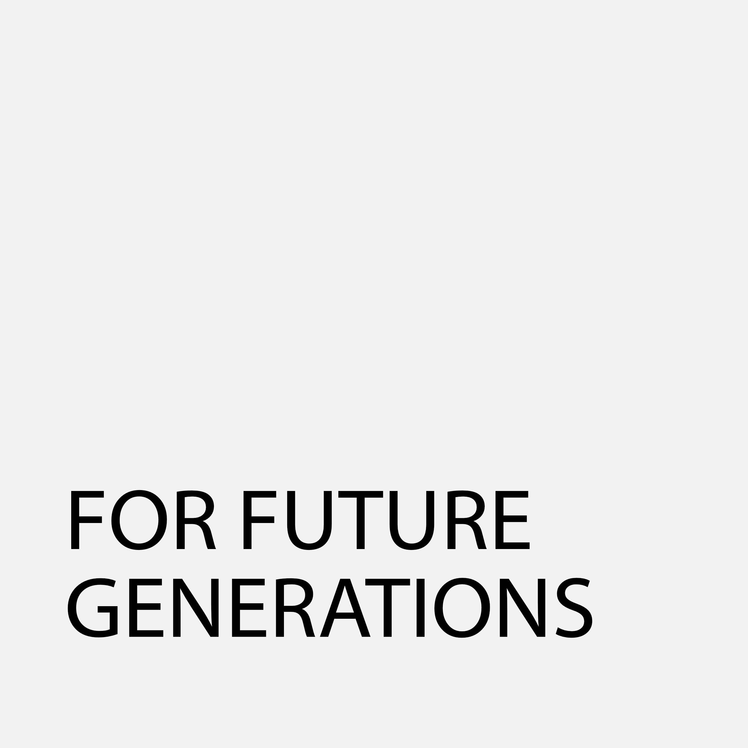 FutureGenerations95Grey.jpg