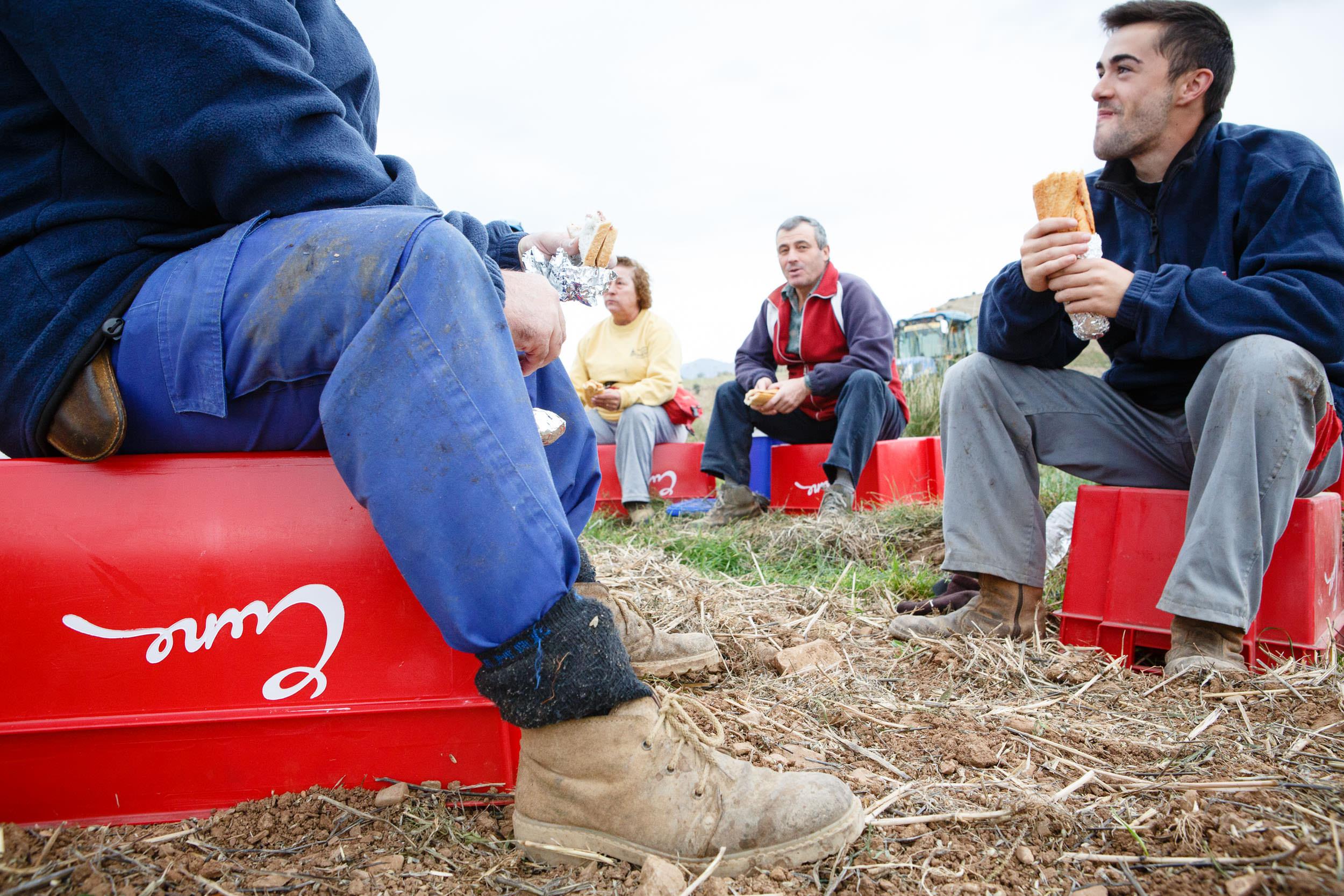 22/10/13 Bodegas CVNE, La Rioja, España. Foto de James Sturcke Fotografía   www.sturcke.org