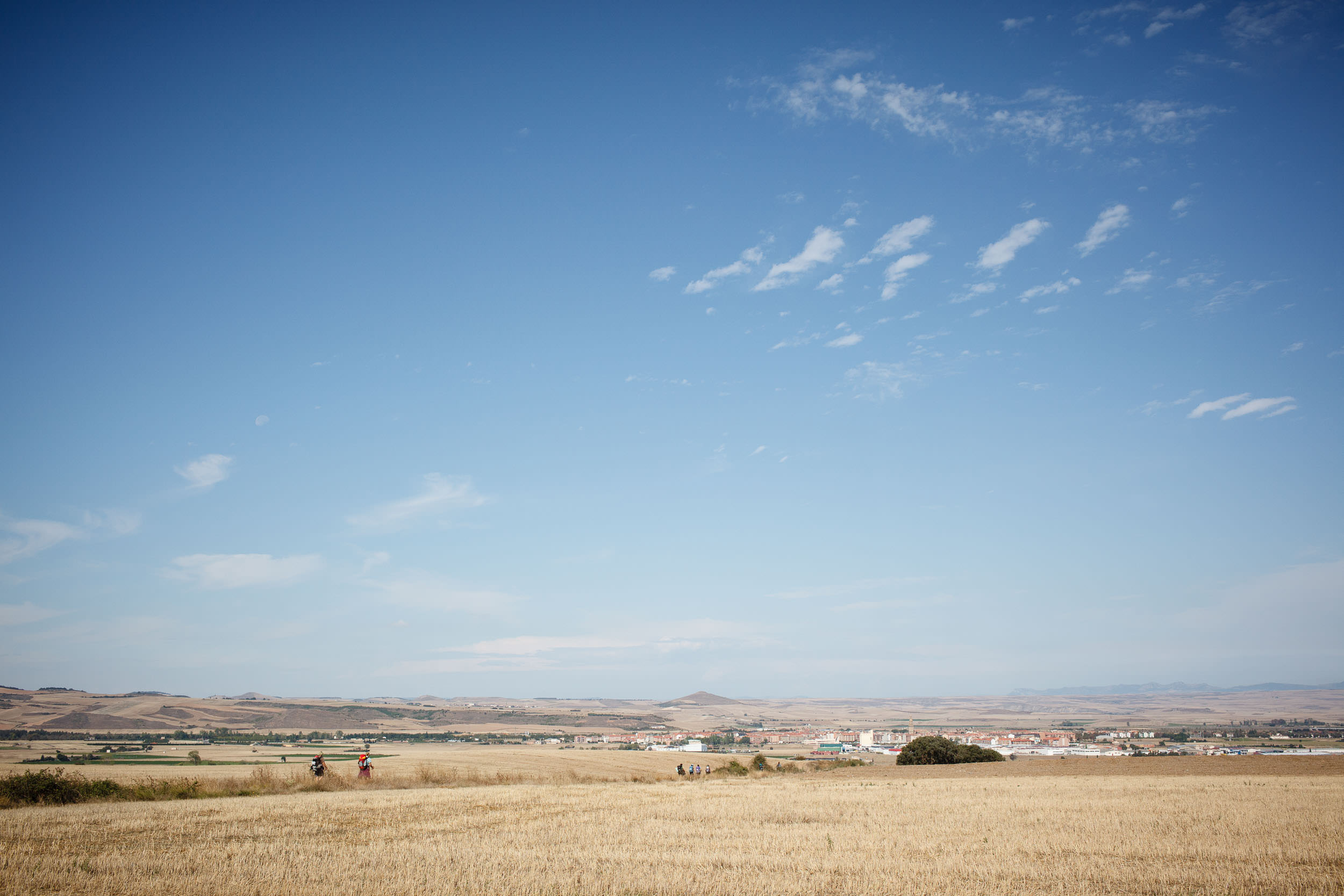 13/09/14 Peregrinos en el Camino de Santiago cerca de Santo Domingo de la Calzada, La Rioja, España. Foto @ James Sturcke   www.sturcke.org
