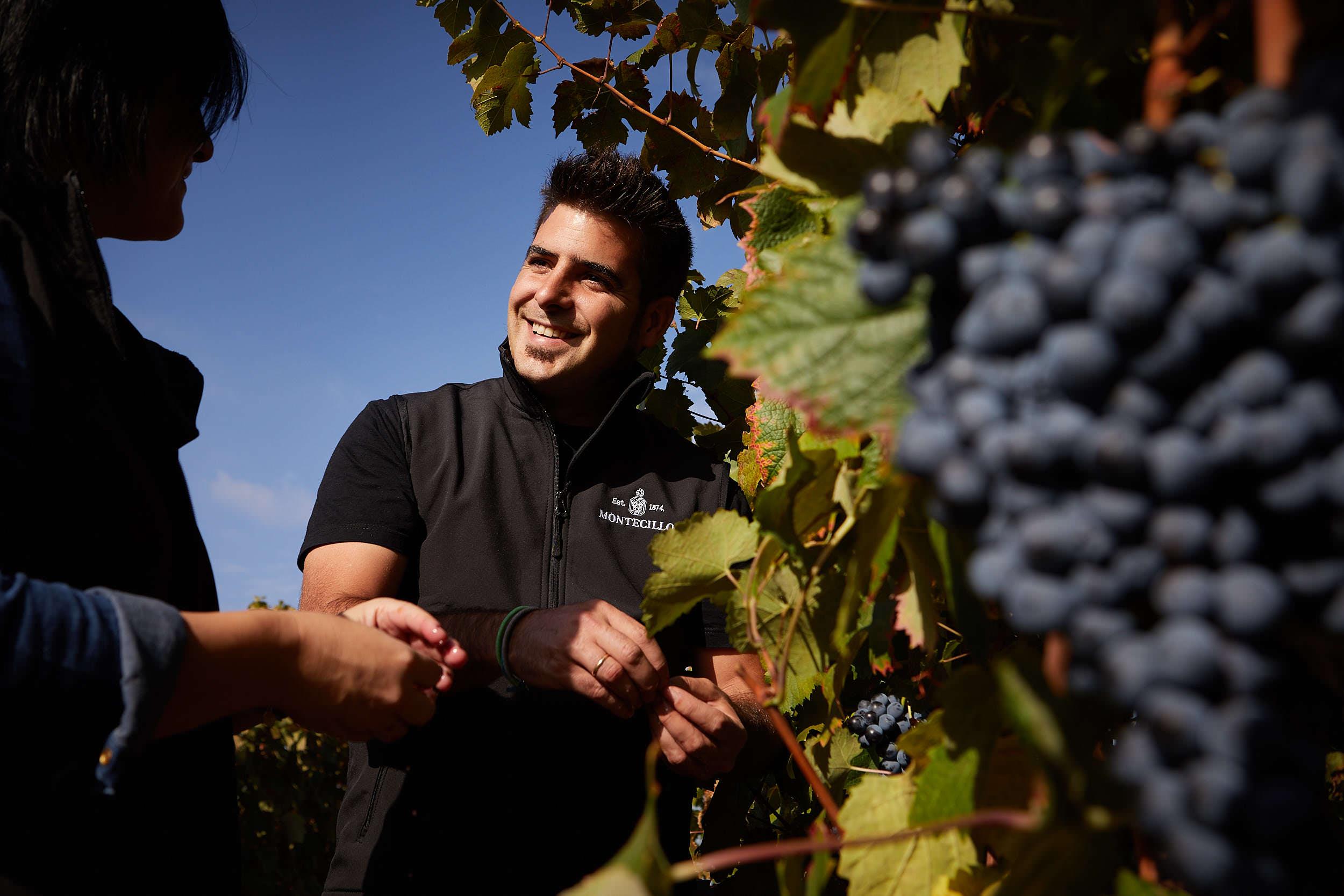 1610Bodegas_Montecillo_Wine_Photography_La_Rioja_Spain_James_Sturcke_sturcke.org_0001.jpg