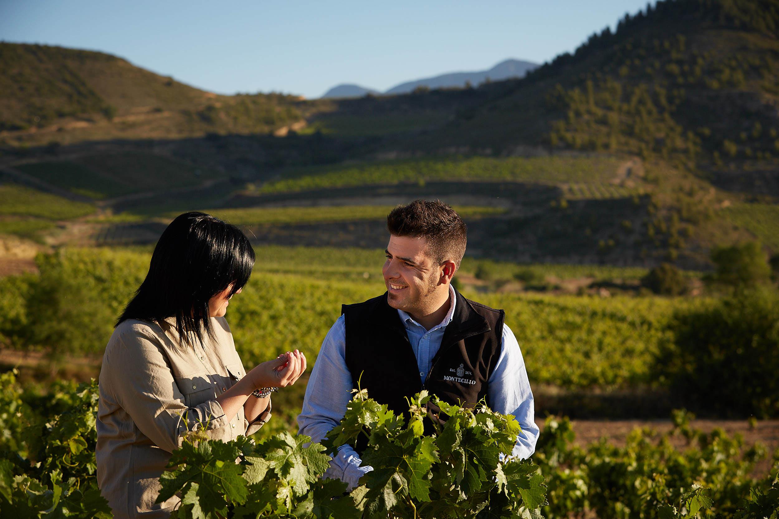 1706Montecillo_Winery_La_Rioja_Spain_Sturcke_0005.jpg