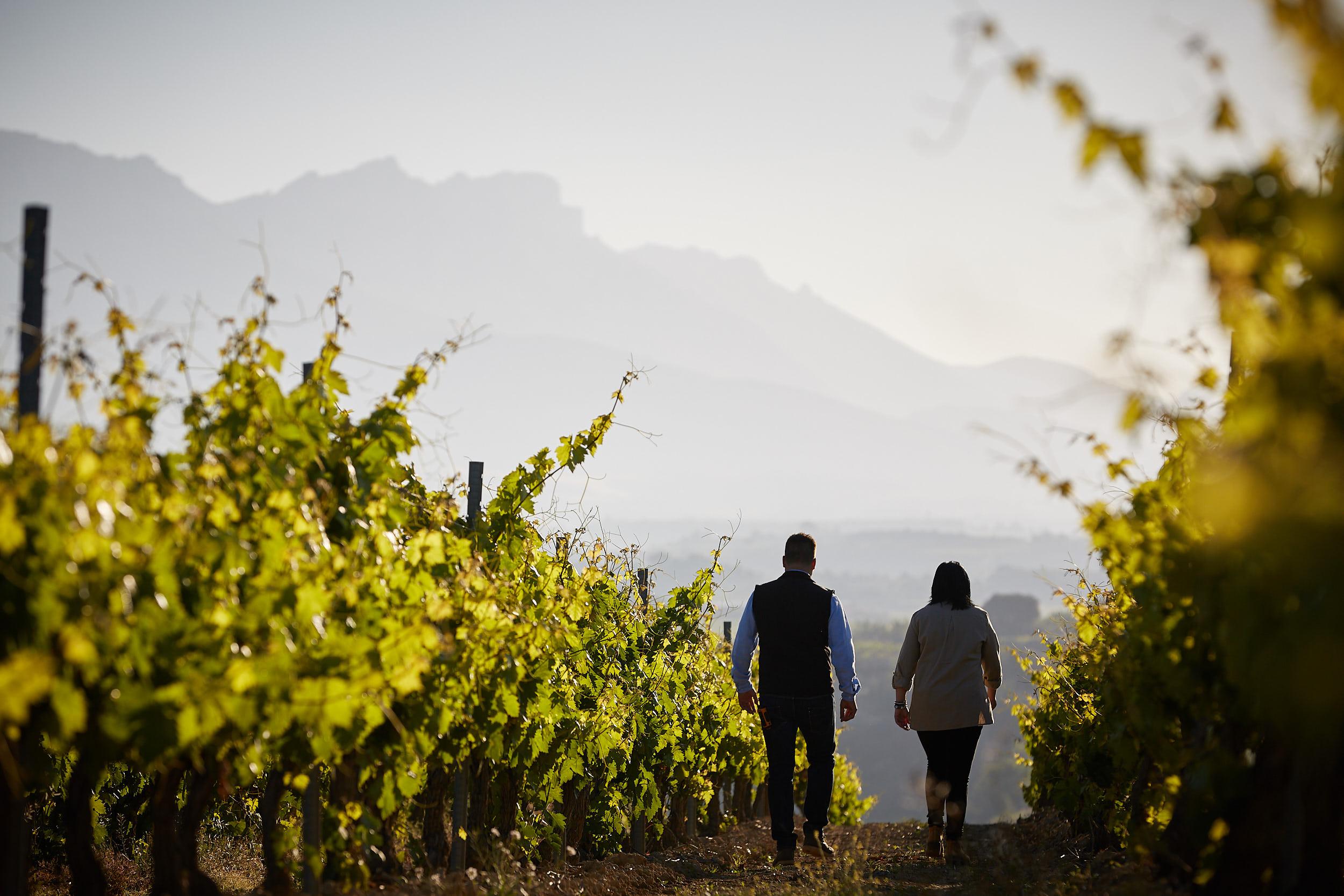 1706Commercial-professional-wine-photography-la-rioja-spain-James-Sturcke_0001.jpg