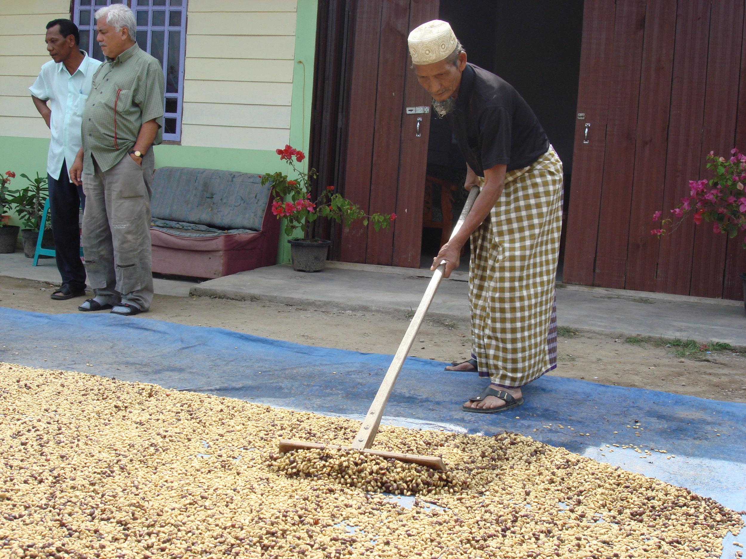 Sumatra 4.JPG