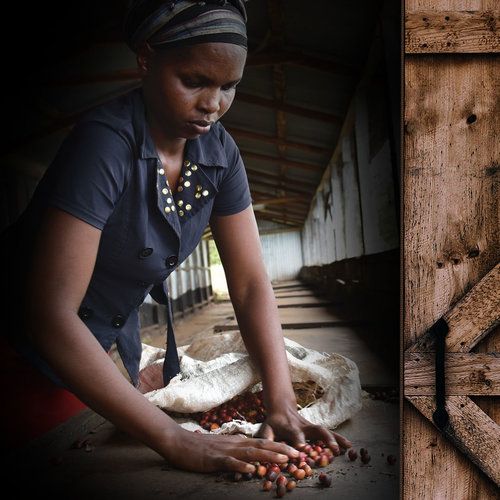 WHY FAIRTRADE? - Find out why we think Fairtrade is important