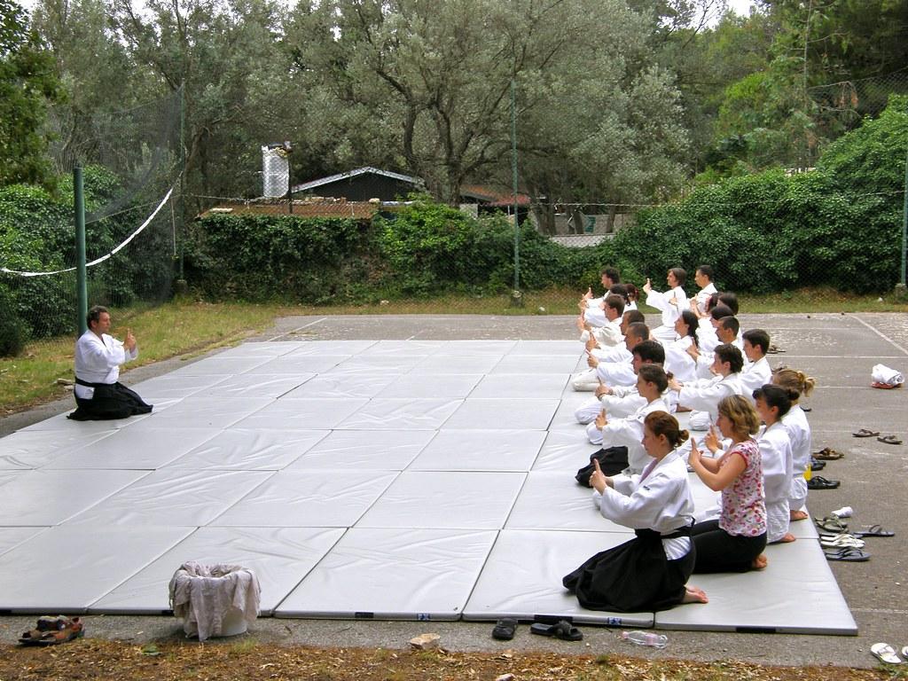Poletni seminar v Premanturi, 2009