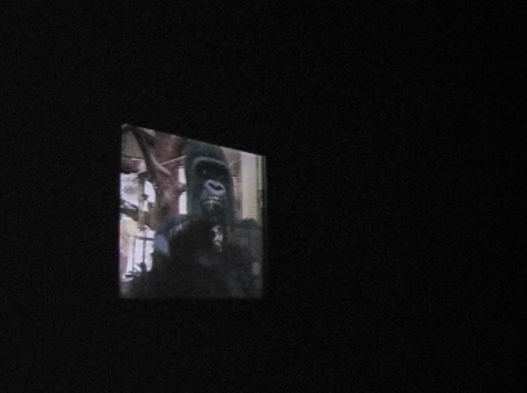 ape house entrance video still jpg 3.jpg