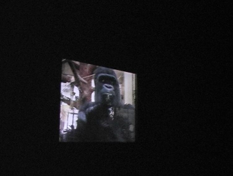 ape house entrance video still jpg 4.jpg