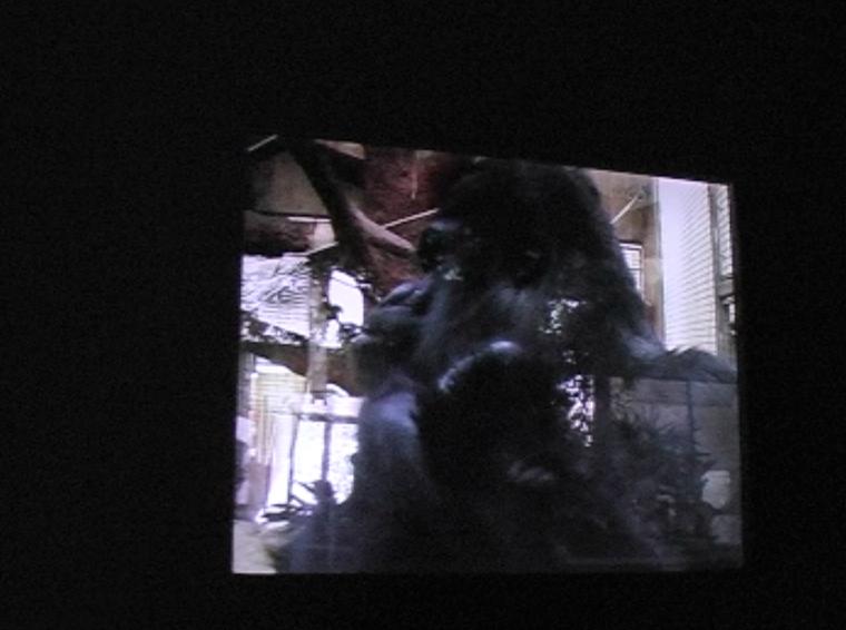 ape house entrance video still jpg 6.jpg