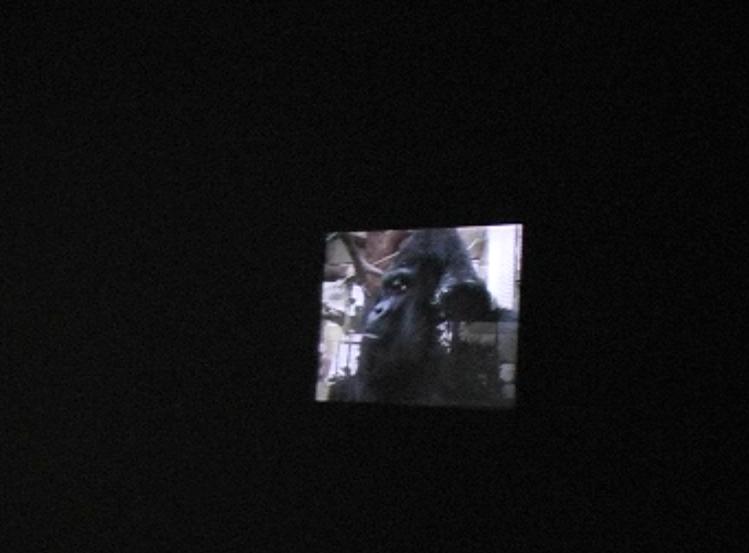 ape house entrance video still jpg 8.jpg