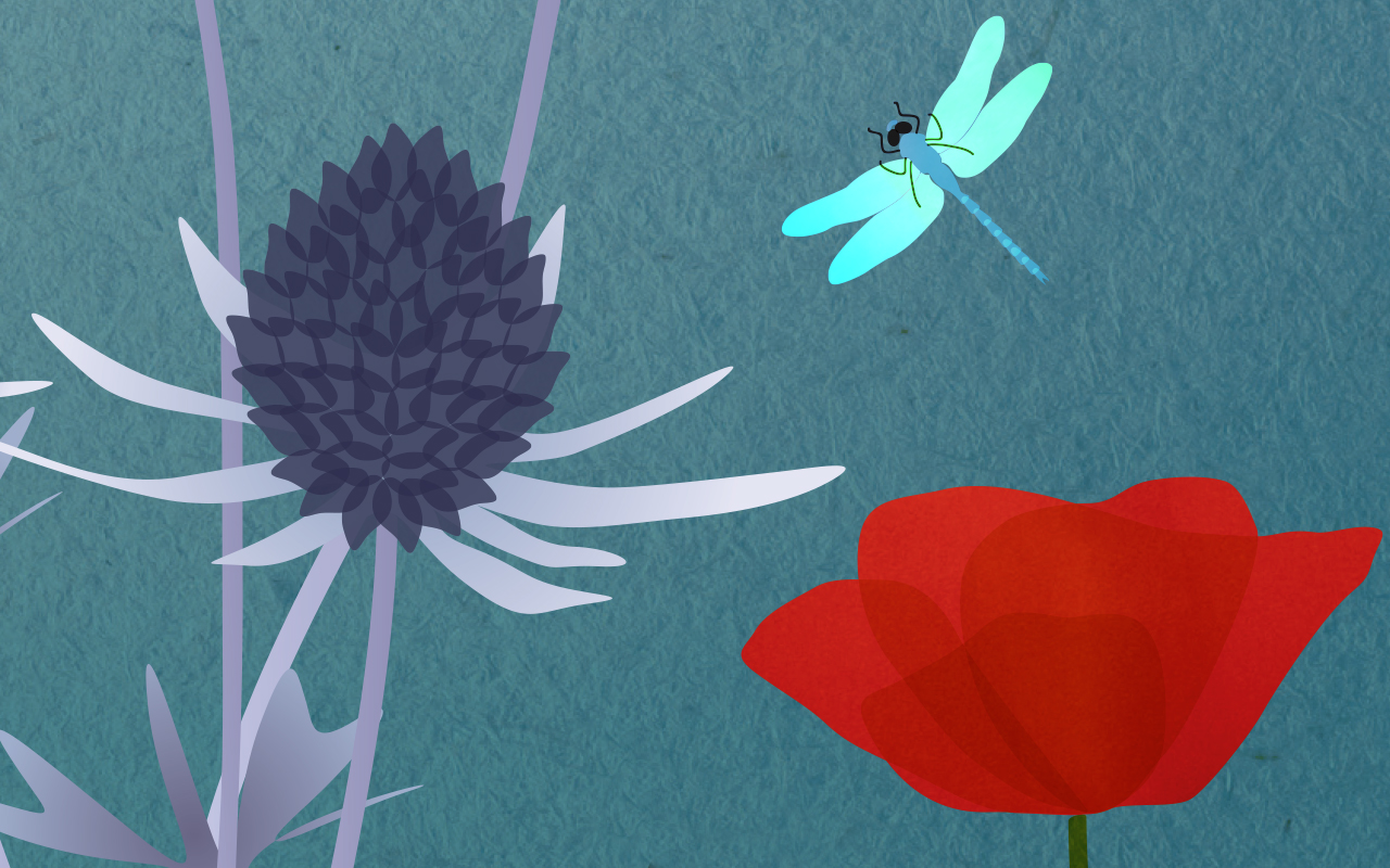 Flowers and bee illustration