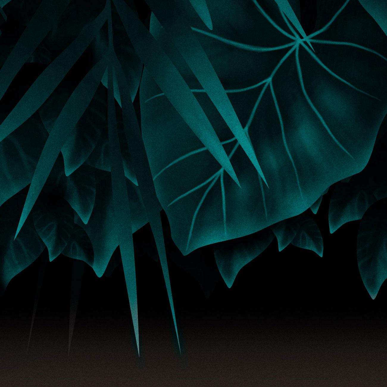 MidnightSwim_Detail02.jpg