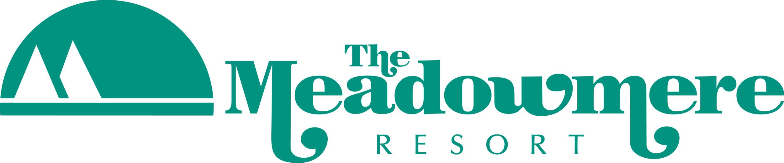 Meadowmere logo_LONG LARGE.png