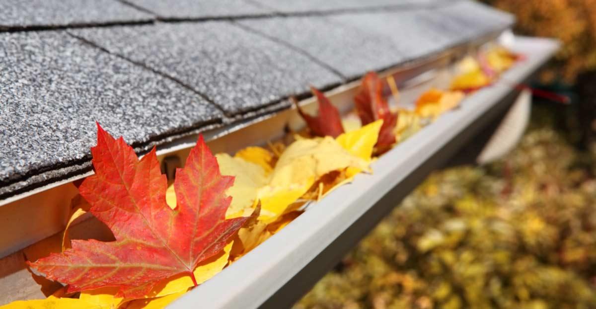 Jetzt Kostenlose Kontrolle Ihres Daches sichern     1.)