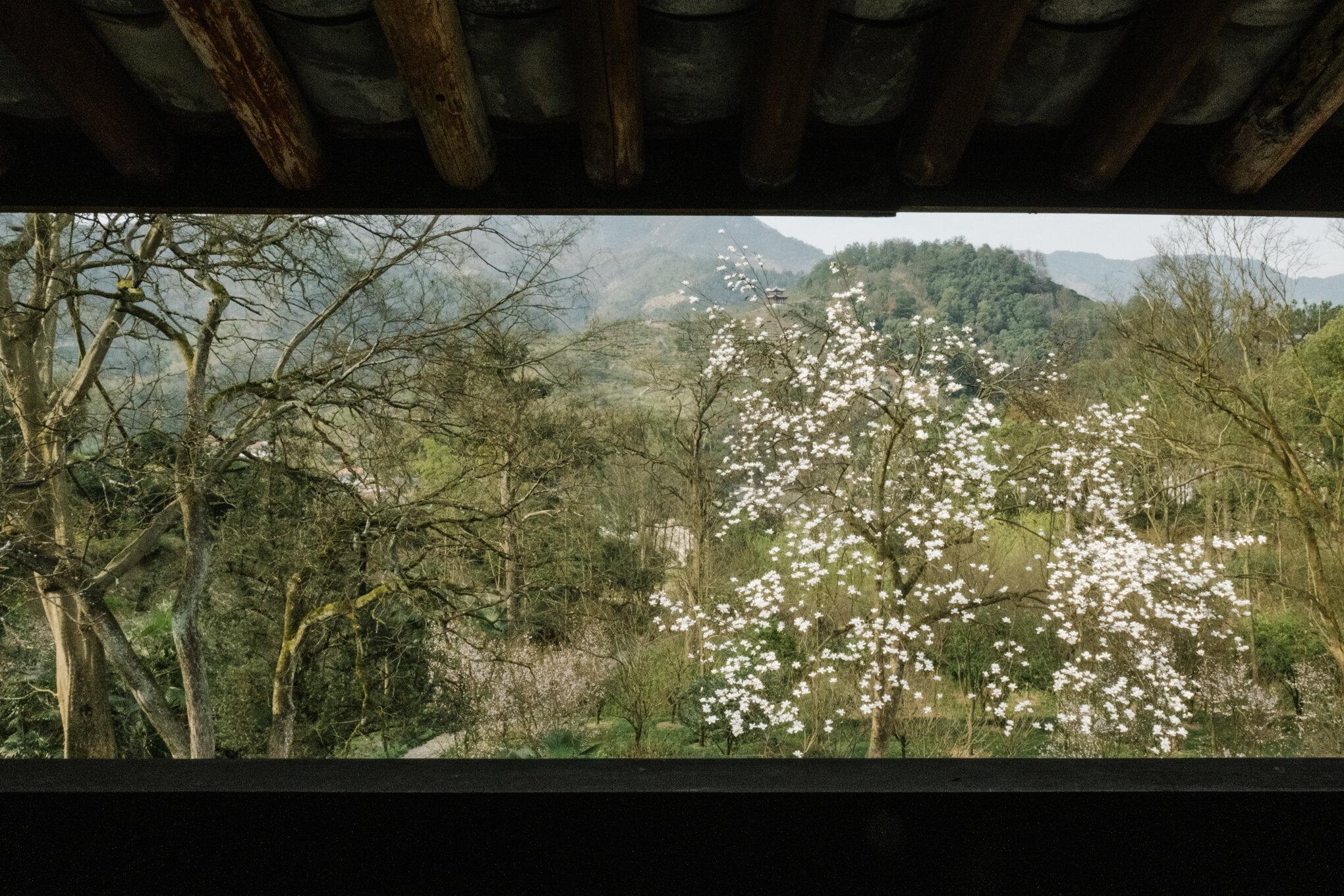 Documentary photography Travel photography Fujifilm Charmaine Wu Photography Thousand Pillar House China XT3 GFX50R 千柱屋 (诸暨市东白湖镇斯宅村千柱屋)
