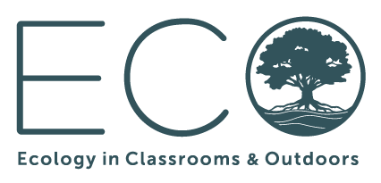 Eco Ecology in Classrooms - One Hundred Seconds Video Production