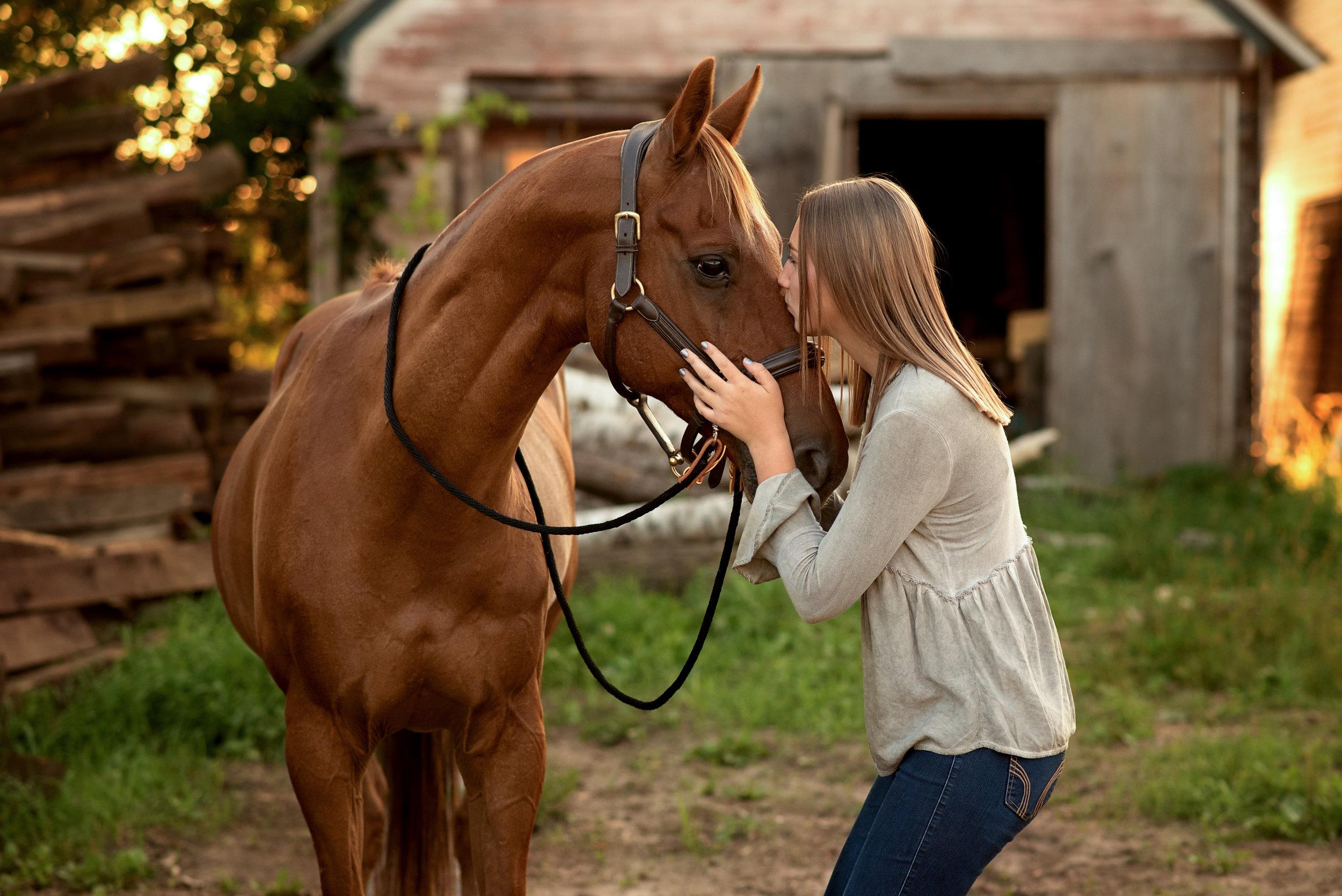 Minnesota-Equestrian-Photographer-2-2.jpg