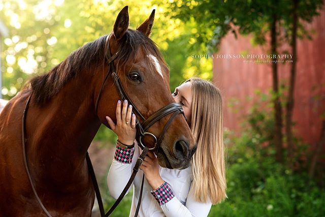 Maddy and Murray 😍♥️🐴 - - - #horse #horses #horsephotography #horsephotographer #mnphotographer #mnphotography #minnesotaphotographer #horsephotographer #horselover #equestrian #love #animals #bestofequines