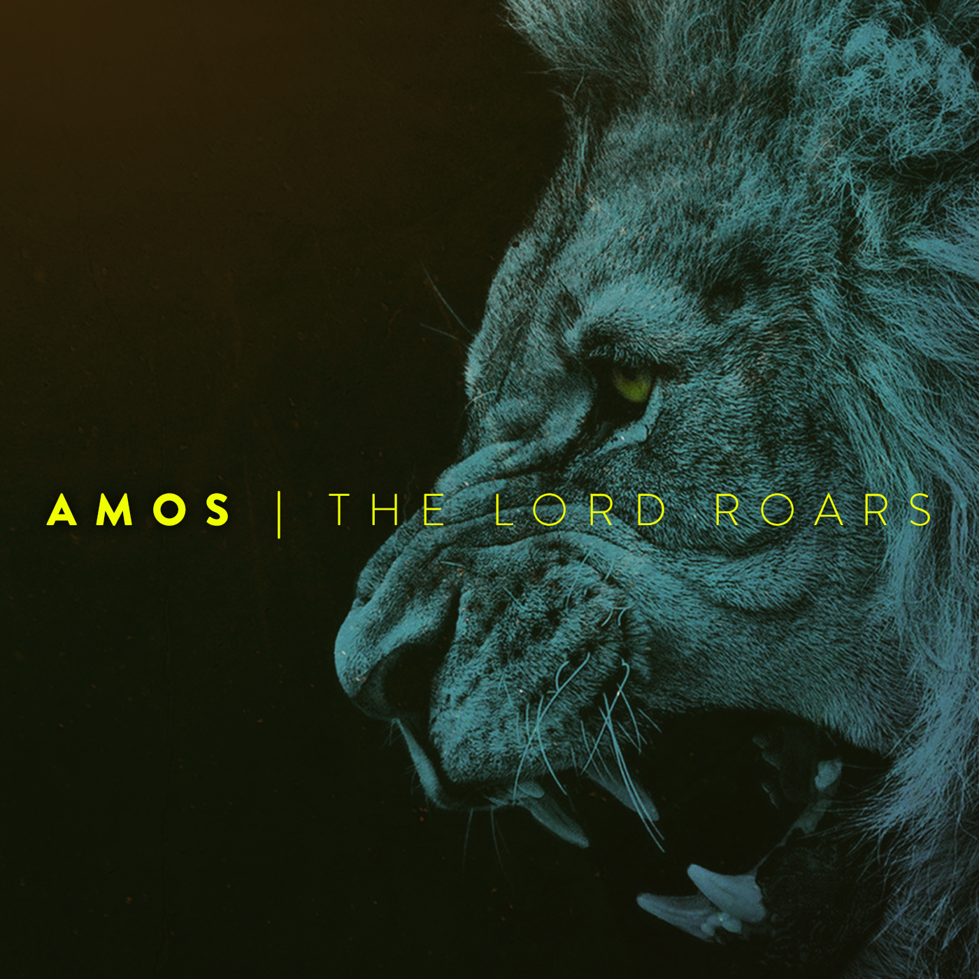 This is a sermon series on the book of Amos.