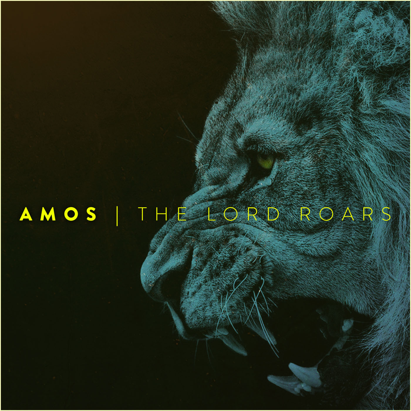 """This is a sermon series on the book of Amos from Rockwall Presbyterian Church, entitled, """"Amos: The Lord Roars."""""""