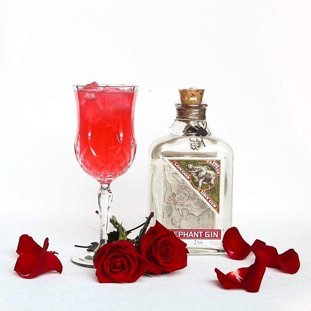 Valentínusardagur á Nostra 🥰 Kíktu við í Happy Hour á ARTSON miðvikudaga til laugardaga frá 17-19 🥂  ____  Come celebrate Valentine's Day at ARTSON for happy hour Wednesday-Saturday from 17-19 🥂  Picture featuring Kiss from a rose 🌹 🥰