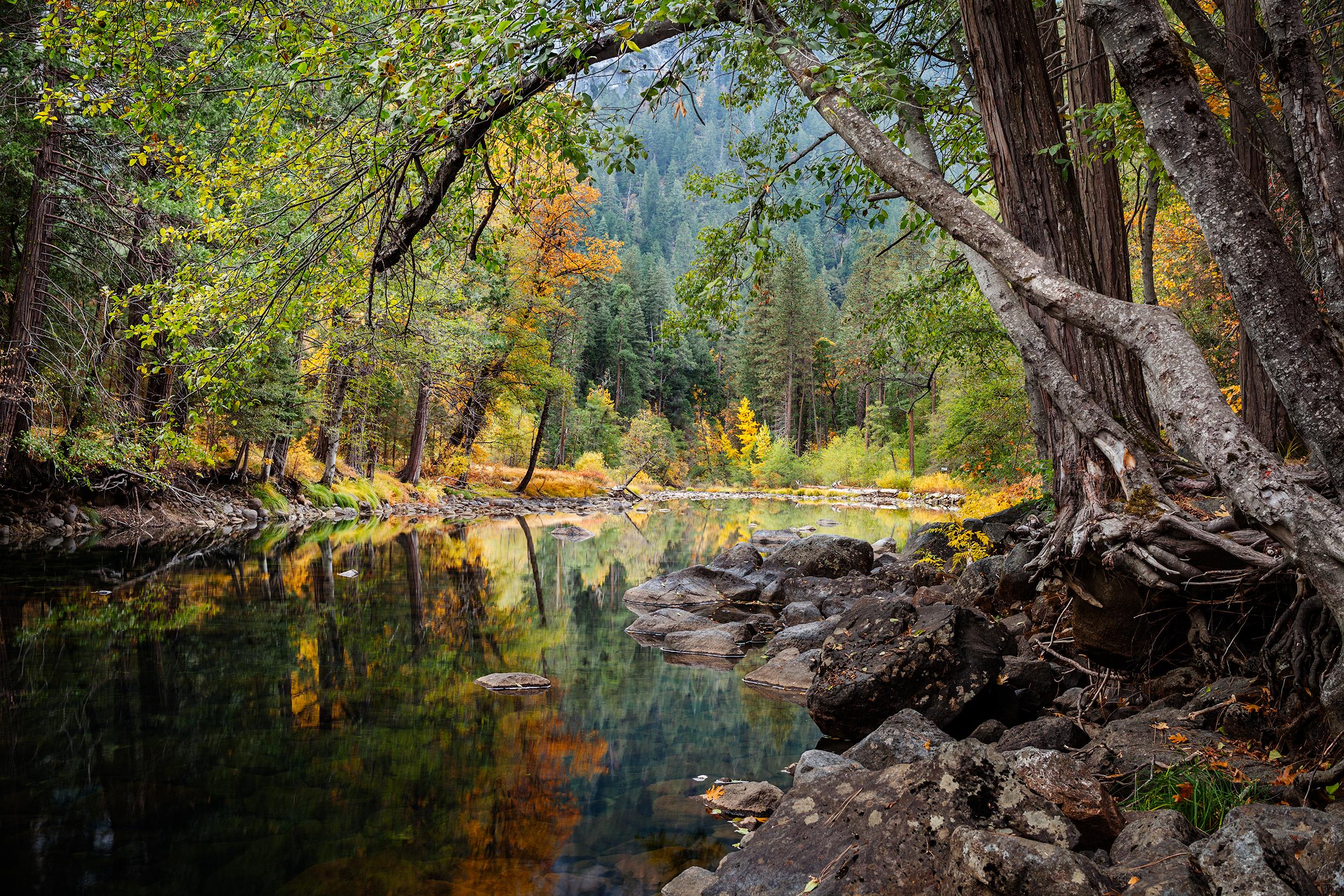 Merced River Autumn (5834)