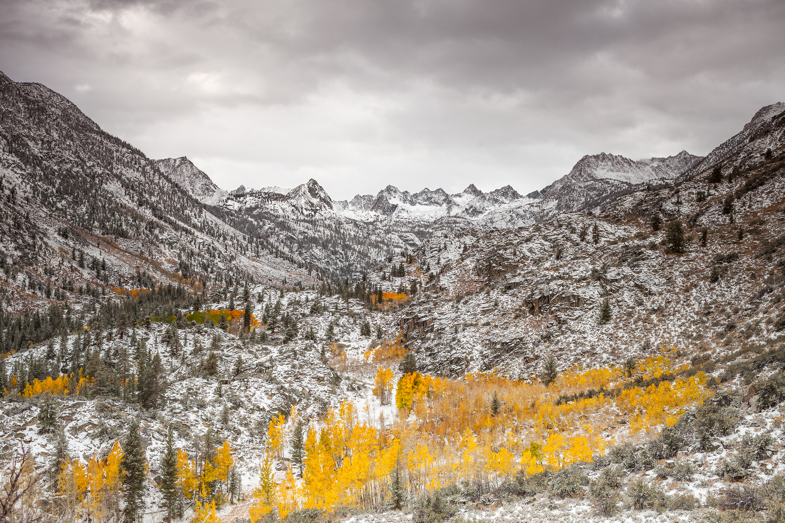 Sabrina Basin Autumn (3882)
