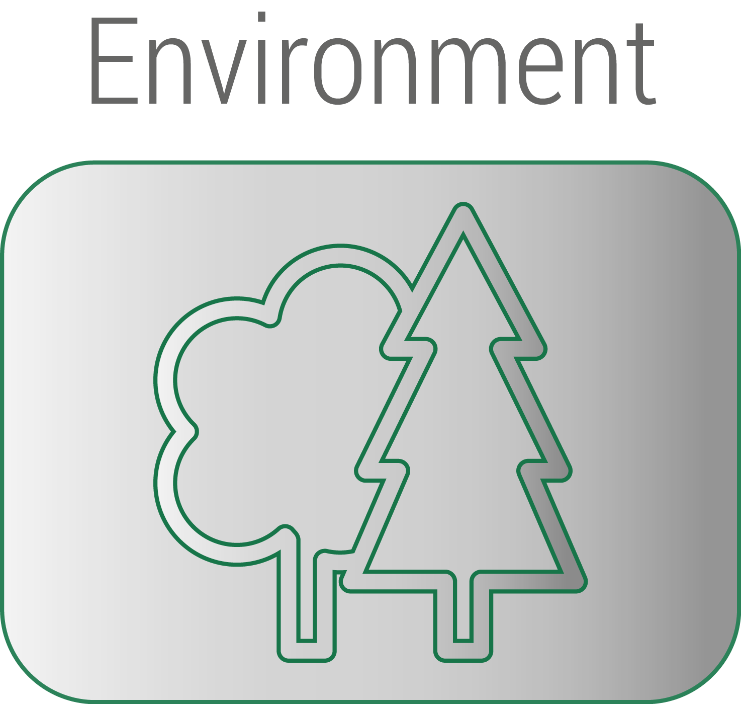 Environment button new.png