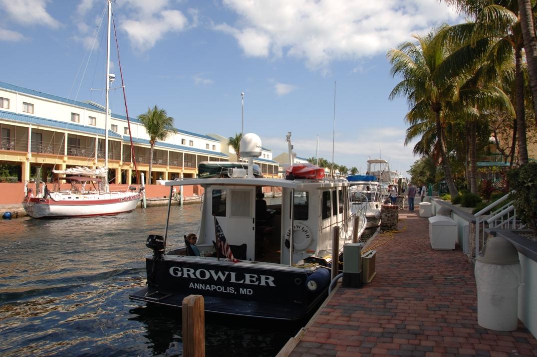 Growler in Key Largo.JPG