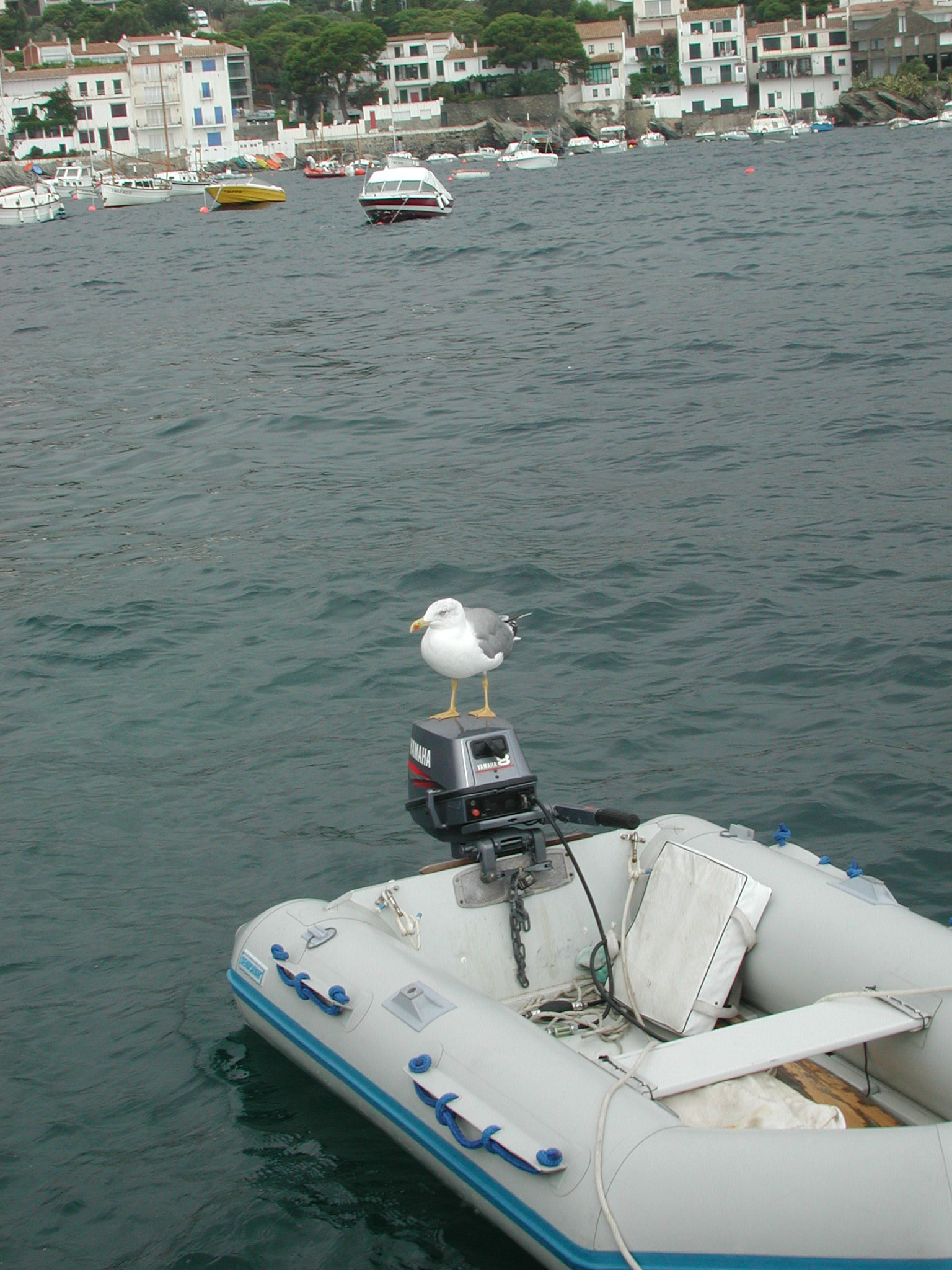 Egret's  inflatable dinghy during the Med years. Yes, this one too went under. We backed over it while re-anchoring after moving from a rolly anchorage to the protection of a land spit off the coast of Italy. Within an hour of recovering the engine it was running and ran for years after.