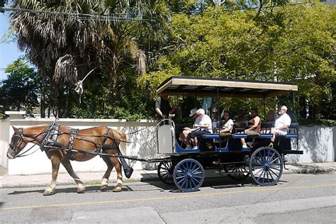 Hokey or not, taking a horse-drawn carriage ride around towns, such as this tour in historic Beaufort, SC, is a great break from sitting at the helm. Wanna get ice cream after the tour?