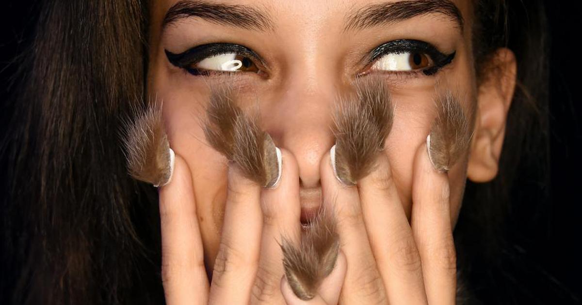 fur-nails-fb.png