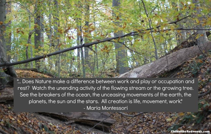 "Do children ""work""...or ""play"" in Montessori?"