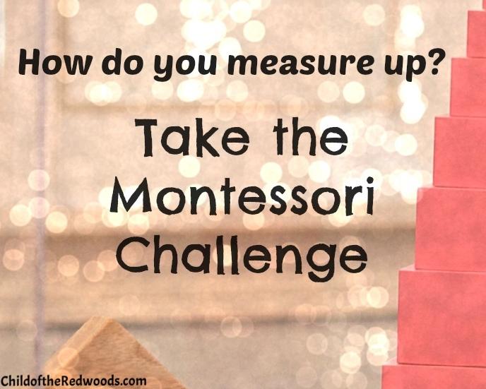 Maria Montessori was a pretty amazing woman. How do you measure up? Take the Montessori Challenge and see.