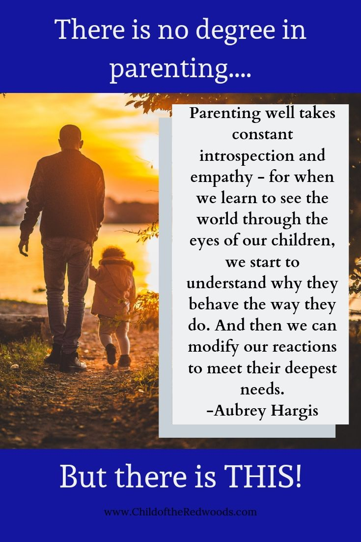 No Degree in Parenting Pin 1