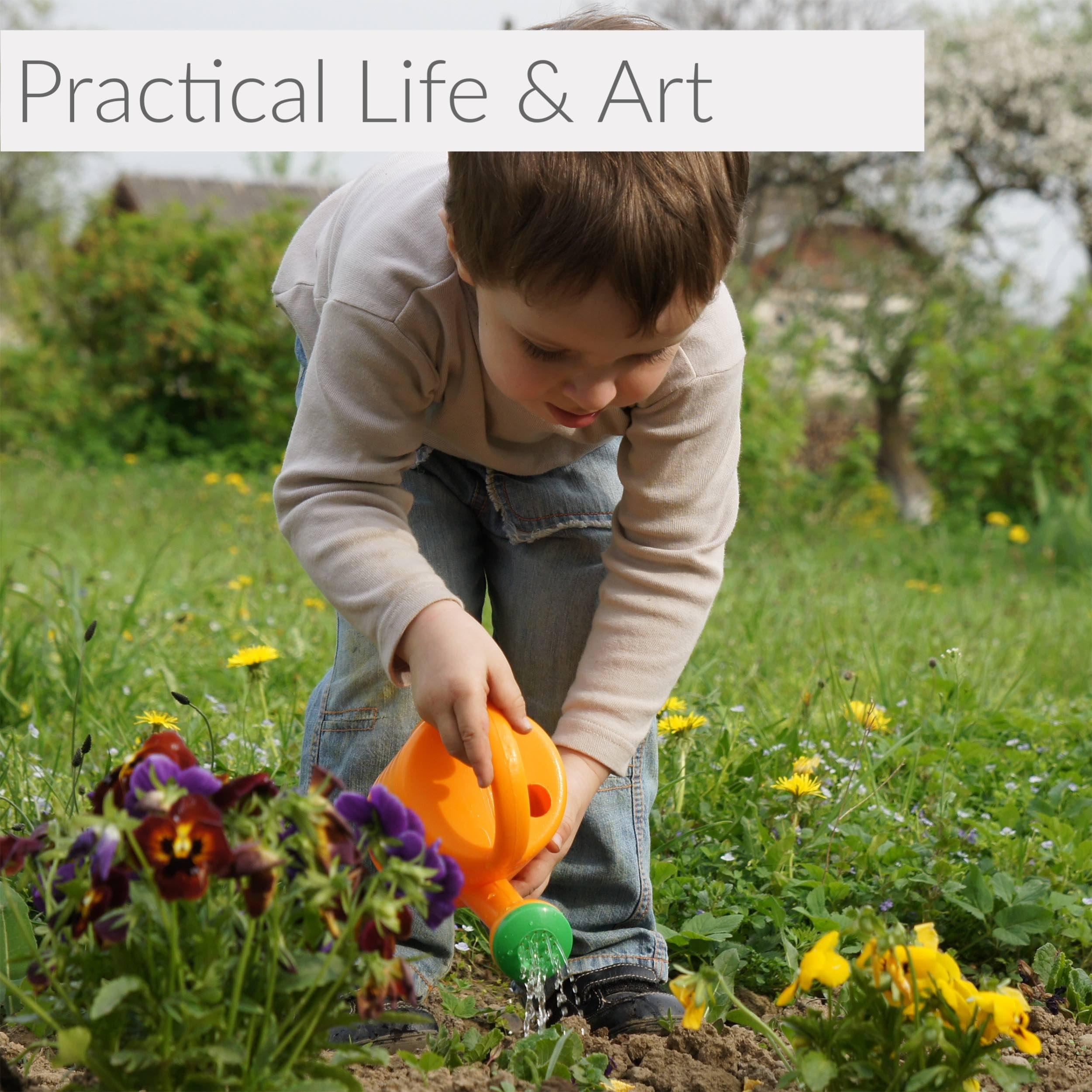 Unit 3 - Practical Life - Image.png
