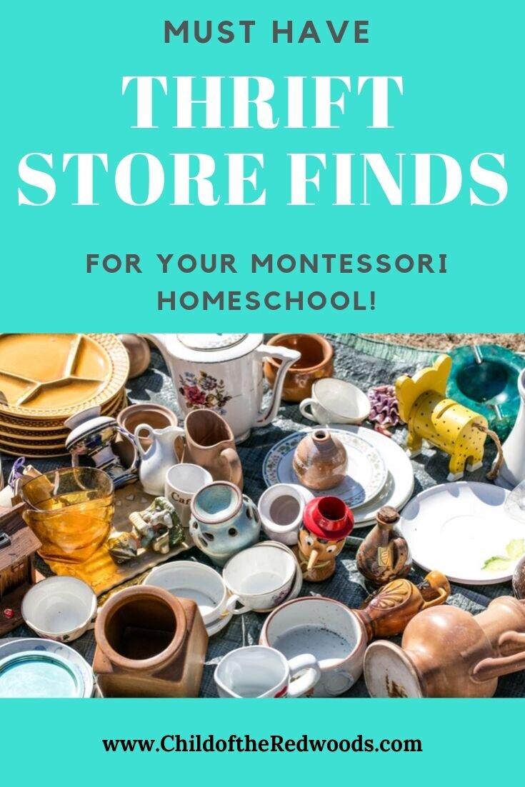 Homeschool Thrift Finds PIN 1.jpg