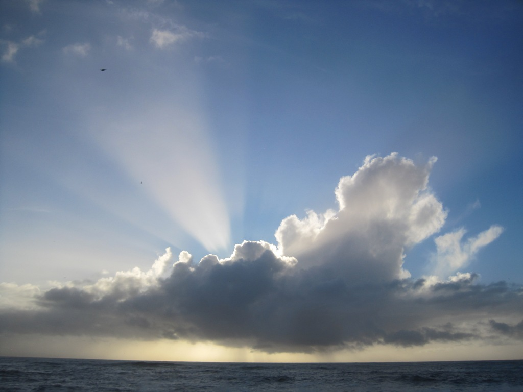 Web Every Cloud.JPG