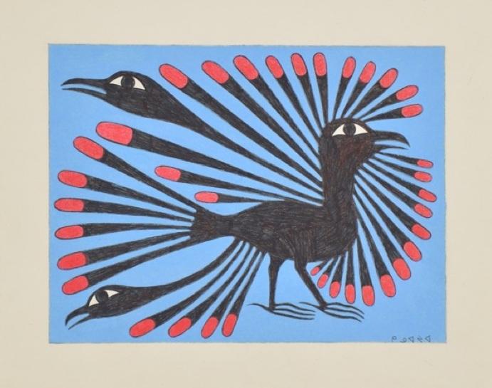 Filigreed Raven