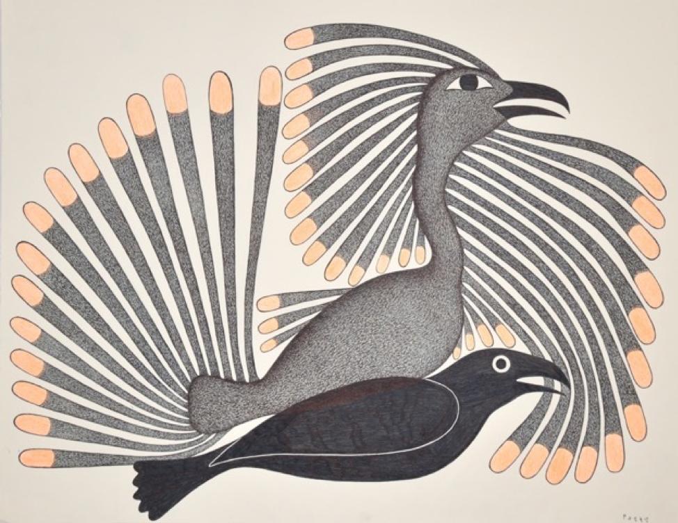 Intruding Raven