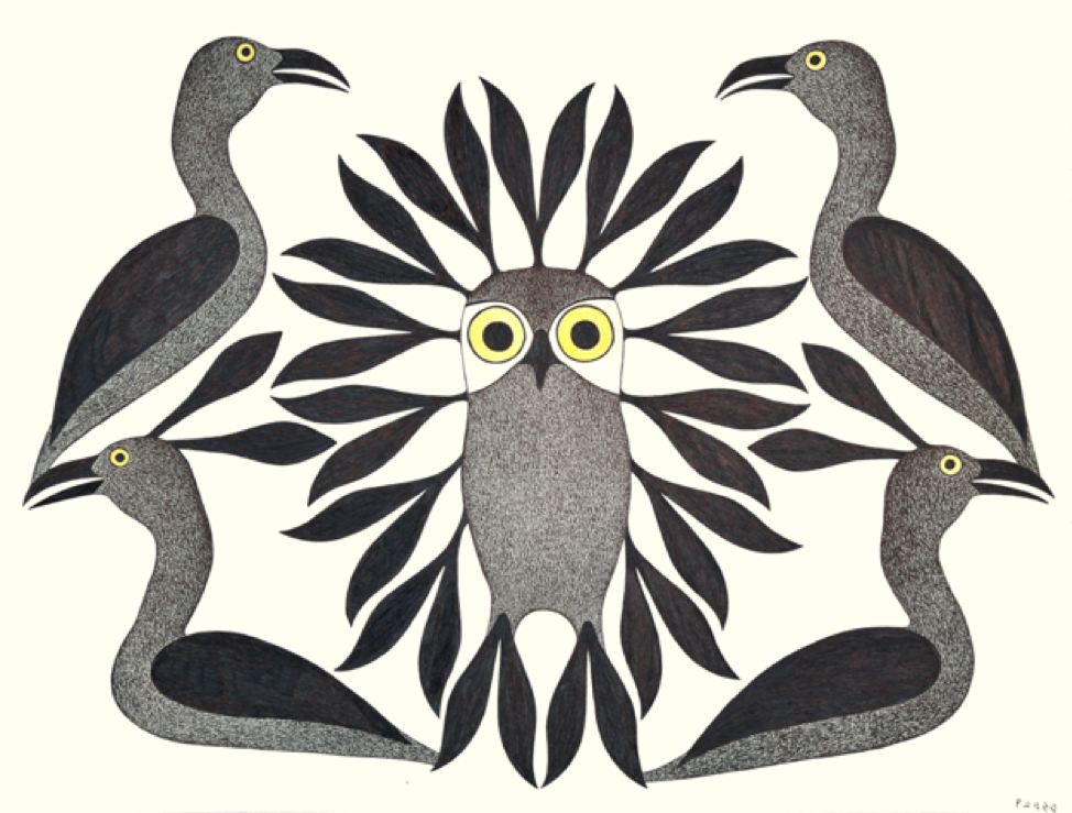 Loons Protect the Owl