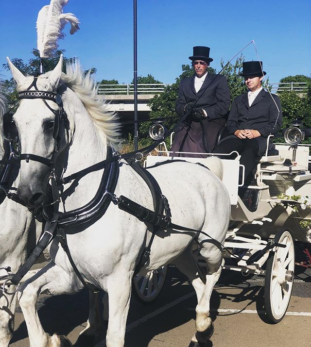 Always a good sign to see the #horsedrawncarriage before a wedding meeting with the #bridetobe 🦄 🎩 in #windsor . . . . . #events #weddingbells #eventmanger #perfectwedding #love #mrandmrs