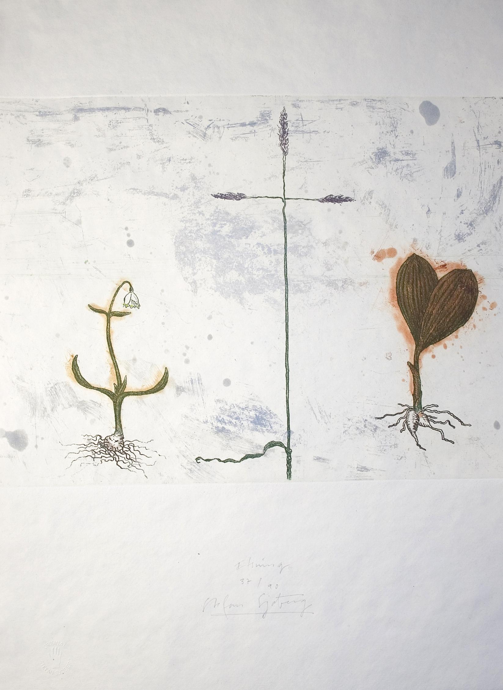 Tro-hopp-kärlek i naturen (2).jpg