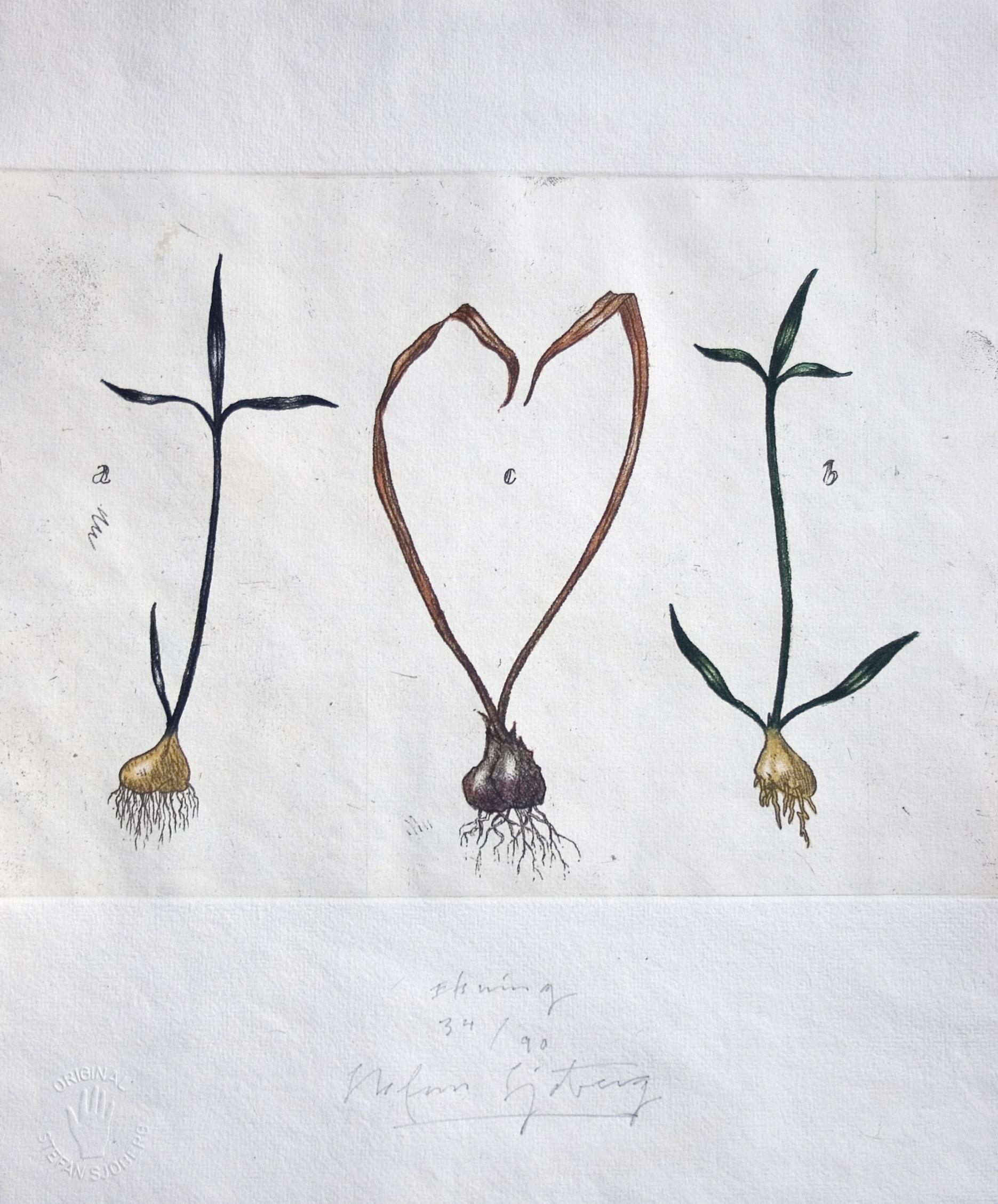 Tro-hopp-kärlek i naturen (5).jpg