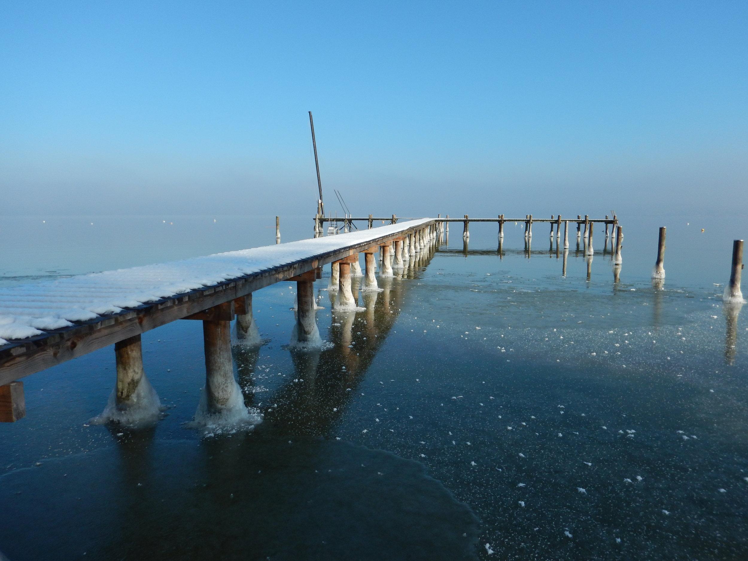 Winter 2017 LuEickmann (11).JPG