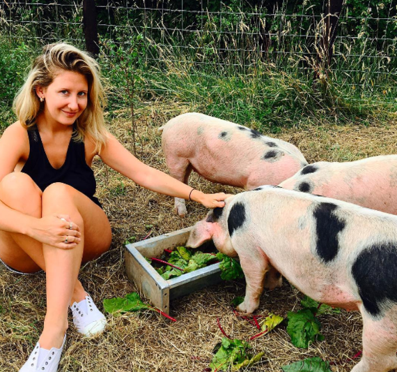 In the orchard with the piglets