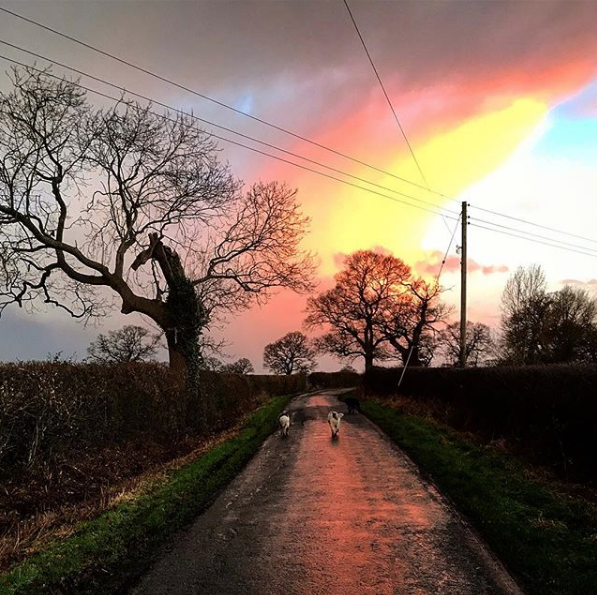 Feb 1, 2018 - I haven't posted anything for a few days, mostly because I lose most inspiration as soon as I hit the city. Now I'm back in the countryside and the ideas and thoughts have all started flaring back up. The sky today has just been amazing, constantly changing! I always forget how instantly calm and happy I feel and how much pleasure I take from just getting outside in the fresh air. Suddenly I don't need shops or screens or things, I just need to be outside whether it's calm and still or wild and windy. It never fails to invigorate me and I return to the house with a smile on my face. Sometimes getting out of the house is the hardest part - but all the benefits are just sitting there, whatever the weather, waiting for us to take full advantage of them!