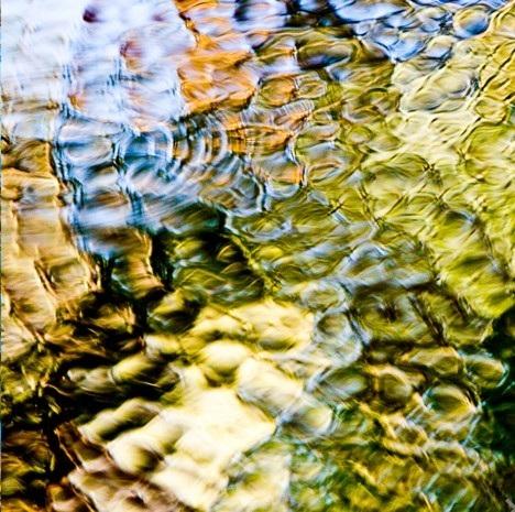 Freshwater Veins, May - July, 2016