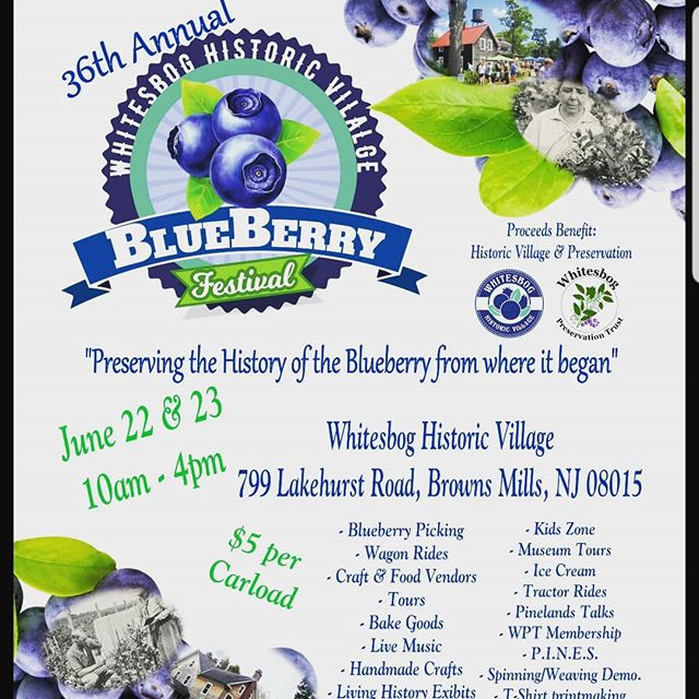 PA NJ DEL friends! Check it out this weekend!!! BLUEBERRIES!!! One of our team members will be there this weekend enjoying the festivities.  June 22&23 Brown Mills NJ.  Whitebog Historic Village  #strive2thrive #whitesbogvillage #whitesbogblueberryfestival  #thesacredseeds #blueberries